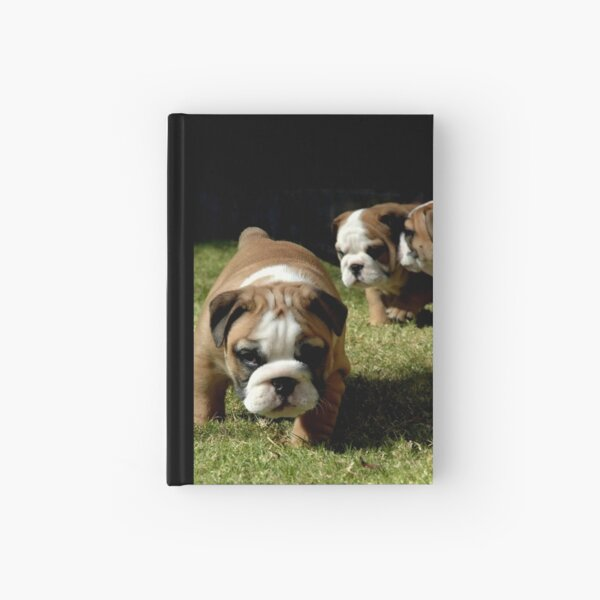 ~I TOLD YOU NO PHOTOS~ Hardcover Journal