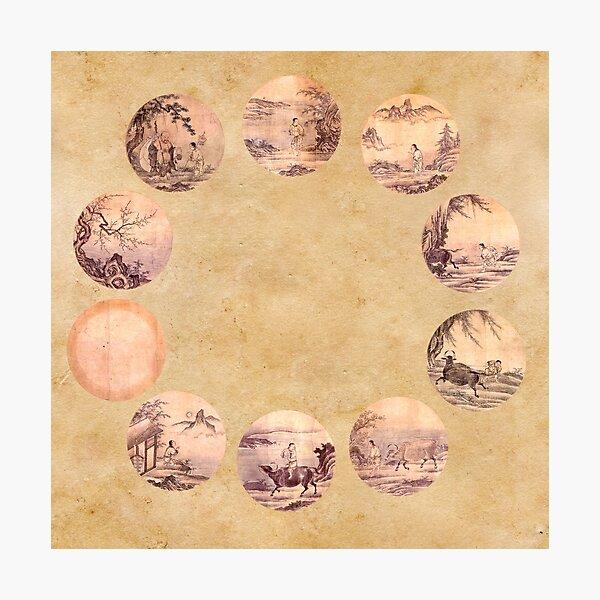 The Ten Oxherding Zen Photographic Print