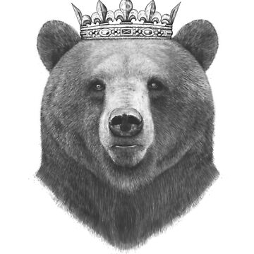 King bear by kodamorkovkart
