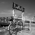 At the Rod and Reel Pier by David Lee Thompson