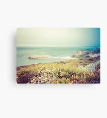Pacific Coast California Canvas Print