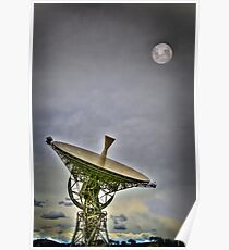 Not THE dish Poster