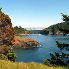 Deception Pass Bridge Seven by Rick Lawler