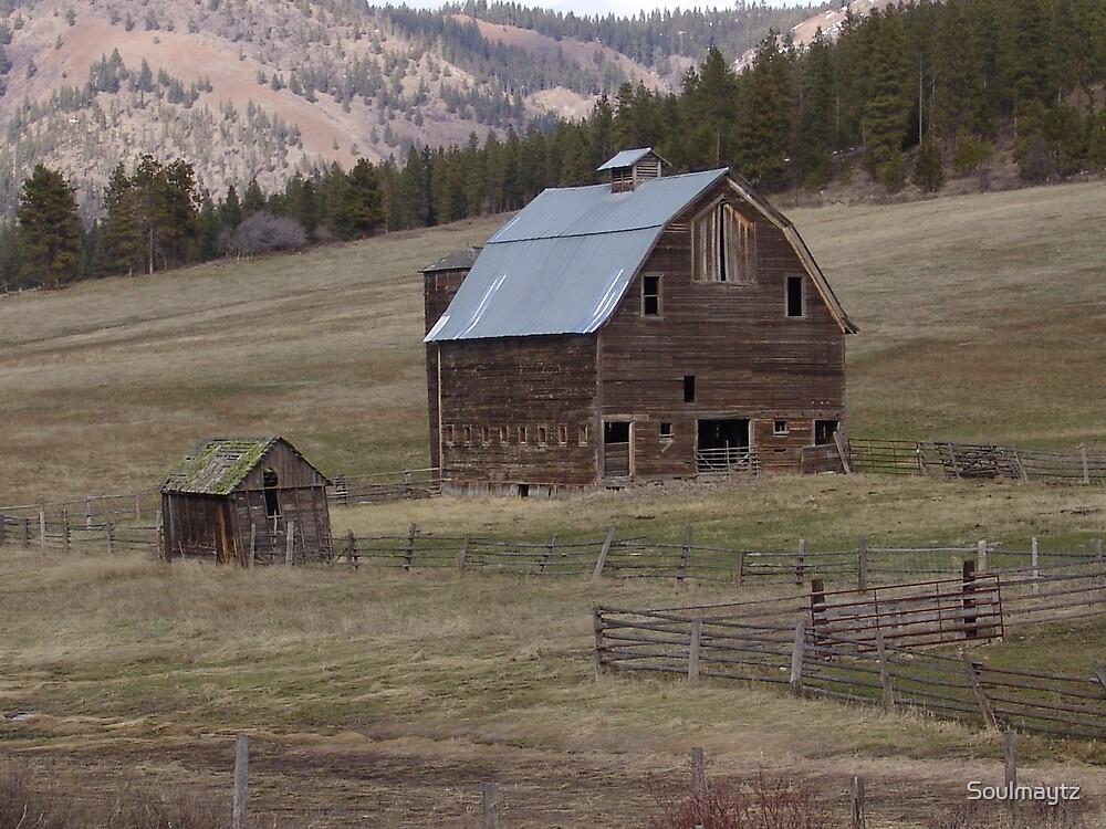Abandoned barn by Soulmaytz