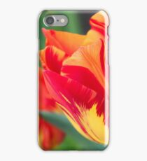 Spring Greetings  iPhone Case/Skin