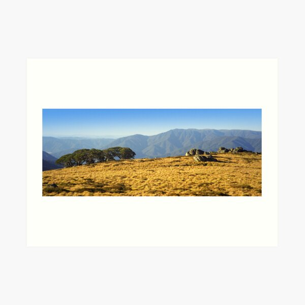 Mt Bogong from Mt Fainters Art Print