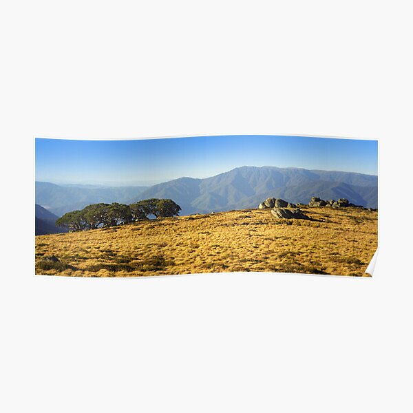 Mt Bogong from Mt Fainters Poster