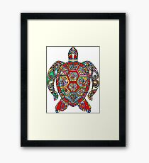 Sea Turtle - Terrapin Framed Print