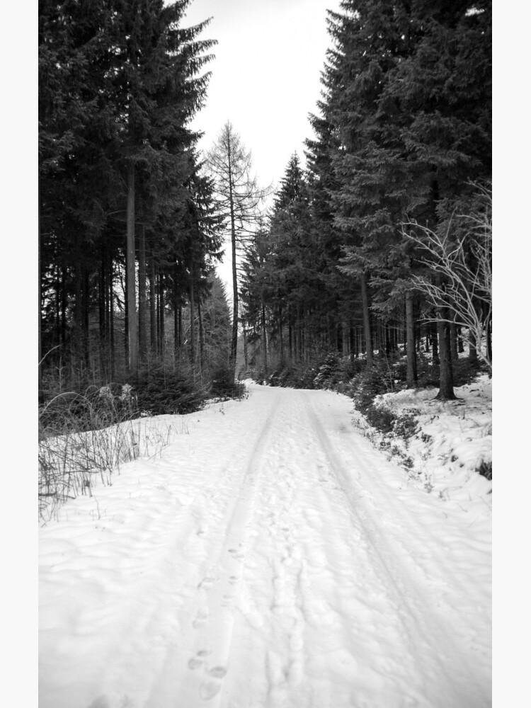 Winterlandschaft von pASob-dESIGN