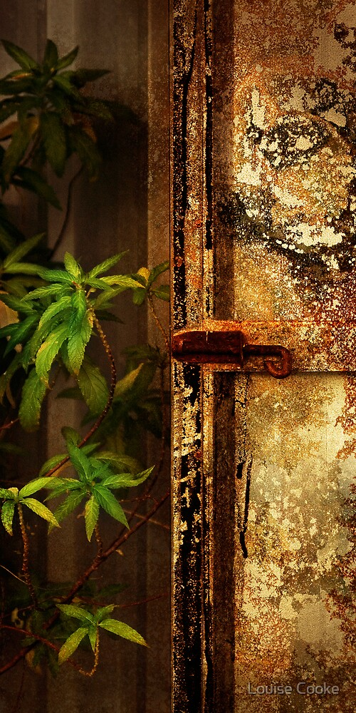 Days of rust by Louise Cooke