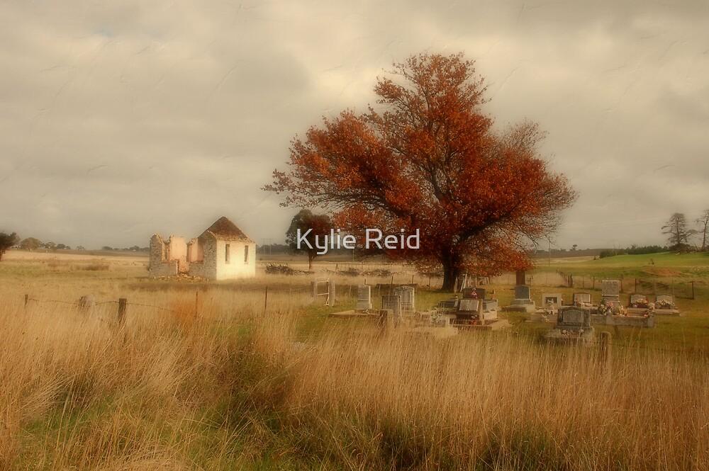 Roadside, Federal Highway, ACT by Kylie Reid