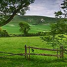 The Long Man Of Wilmington by Dave Godden