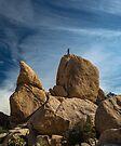 Joshua Tree National Park Hidden Valley by photosbyflood