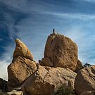 Joshua Tree National Park Hidden Valley by photosbyflood