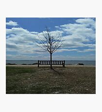 Parkbench by water Photographic Print