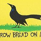 Werfen Sie Brot auf mir Autoaufkleber von cassiarose