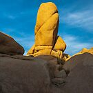 Joshua Tree Monolith by photosbyflood