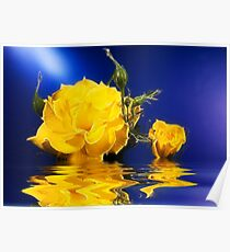 Glowing Yellow Rose Poster