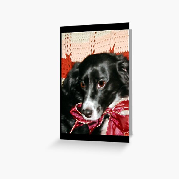 Sweet Little Miesha Greeting Card