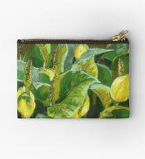 Skunk cabbage in blossom. Soft pastel painting. Studio Pouch
