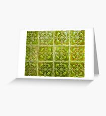 green ceramic. tiles in lisbon Greeting Card