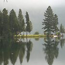 Holland Lake  by Donna Ridgway