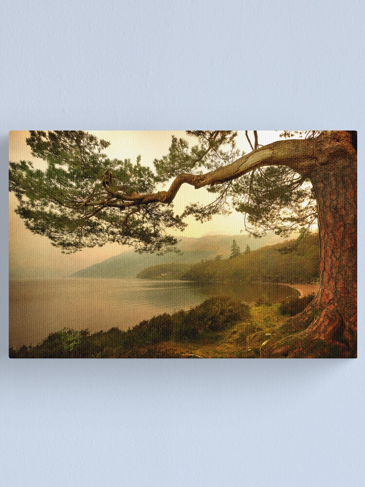 Alternate view of The Branch (Textured) Canvas Print