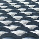 Roof Tiles by Joan Wild