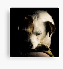 After a Hard Day Canvas Print