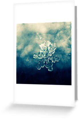 glamour snowflake by Georg Wacker