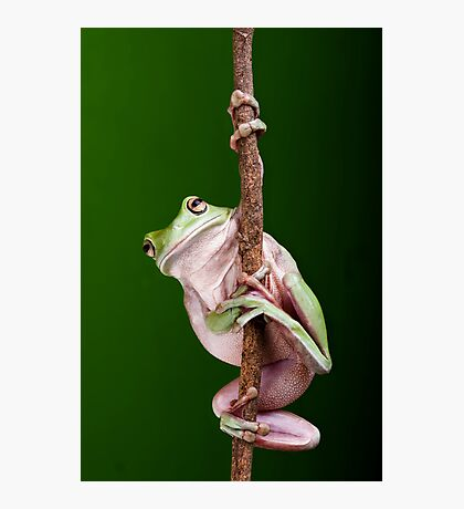 Pole Dancer Photographic Print