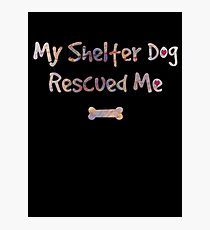 Dog Rescue - Shelter Dog Photographic Print
