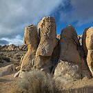 Joshua Tree Hemingway Rocks by photosbyflood