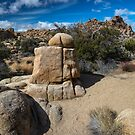 Joshua Tree Hidden Valley Landmark by photosbyflood