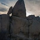 Joshua Tree, Leaning Rocks at Sunset by photosbyflood
