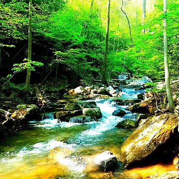 Cool Creek Running by OrneryPenguin