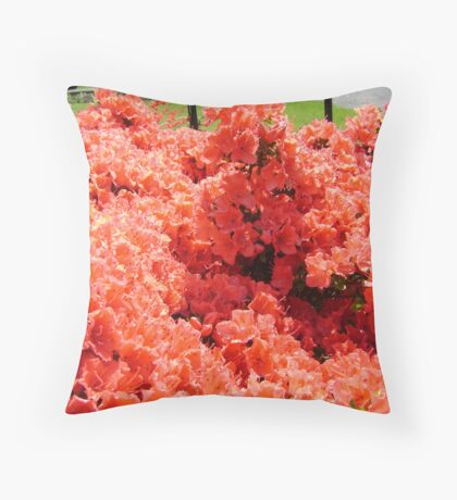 to the fore Throw Pillow