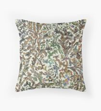 Tree of Life Poster - Animal Evolution - Colour Floor Pillow