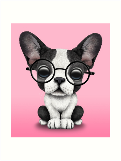 Cute French Bulldog Puppy with Glasses on Pink by jeff bartels