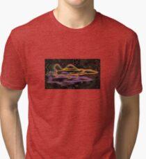 ARTSHAMAN001 Tri-blend T-Shirt