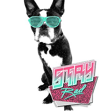 Stay Rad - French Bulldog by Kiteboy