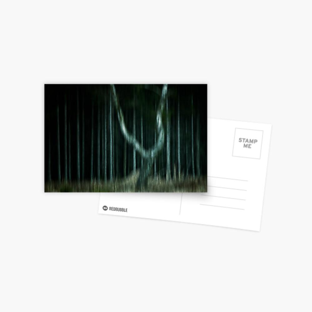ghost tree Postcard