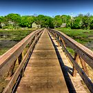 Wellfleet Bridge by Artist Dapixara