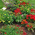 Flowers In My Garden 2 by Linda Miller Gesualdo