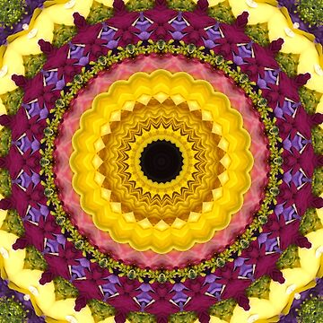 Floral Vortex Mandala by wildmirror