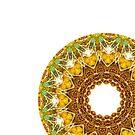 Owl Eyes Mandala by wildmirror