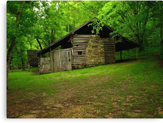 Beaver Jim Villines Boyhood Home by NatureGreeting Cards ©ccwri