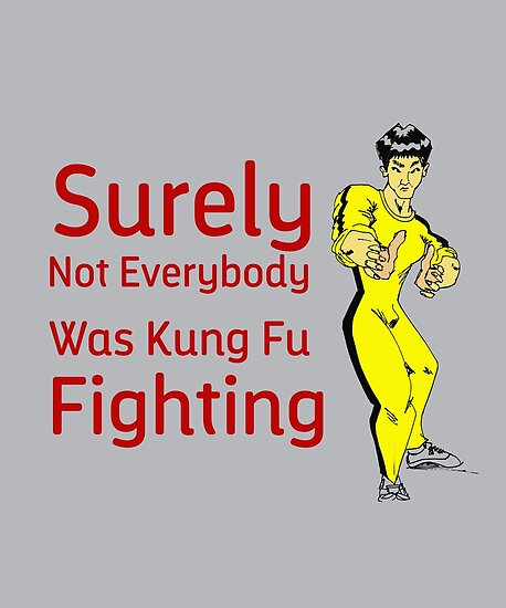 surely not everybody was kung fu fighting quote funny saying kung fu gift for brother gift