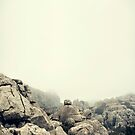 Misty rocks by TheOtherErre