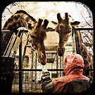 Pictures from zoo by alenavataga